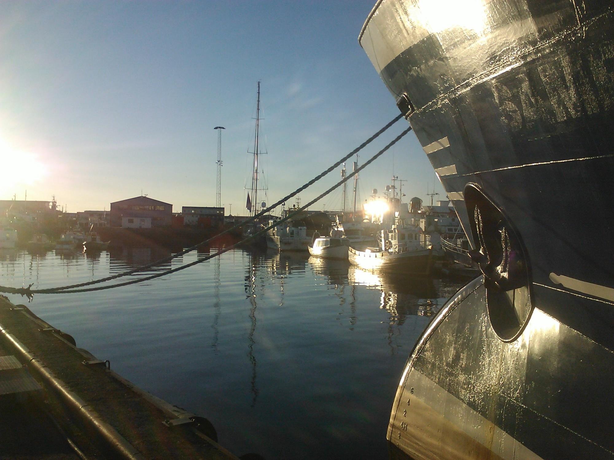 Reykjavik docks