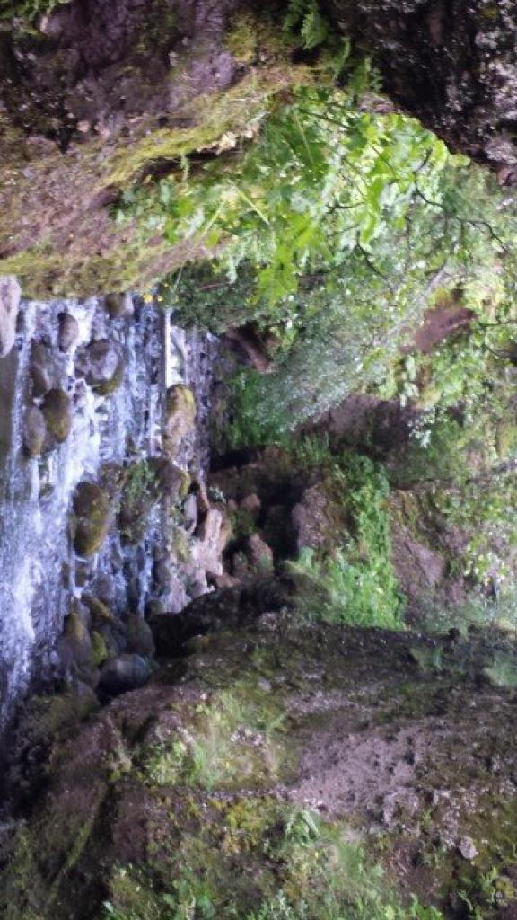 Inside the ravine.