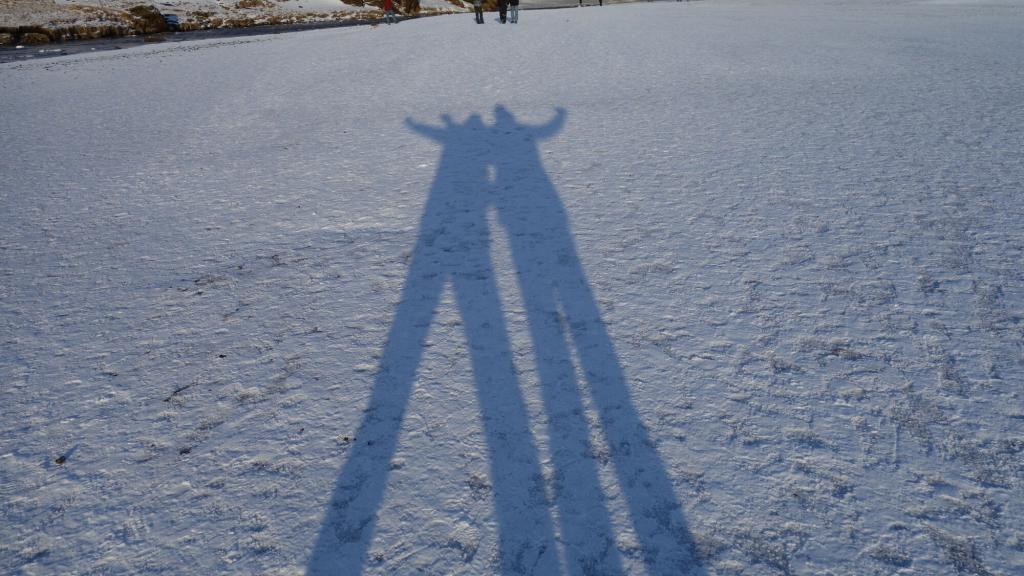 Long shadows in winter sun.