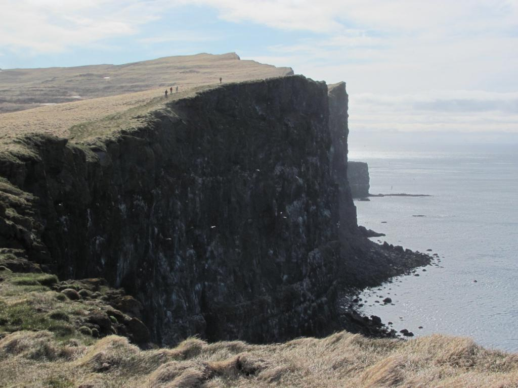 Latrabjarg cliffs.