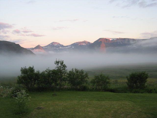 dalalæða in Dýrafjörður