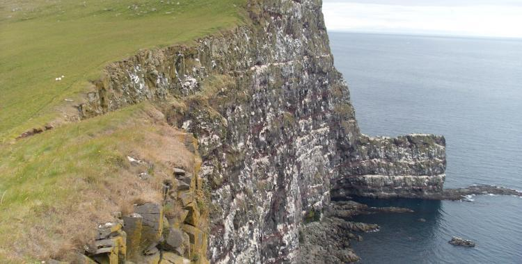 The Latrabjarg Cliff in all of its glory.