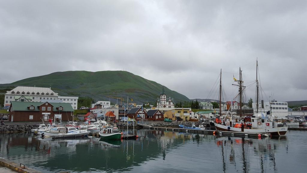 The town of Husavik from the sea.