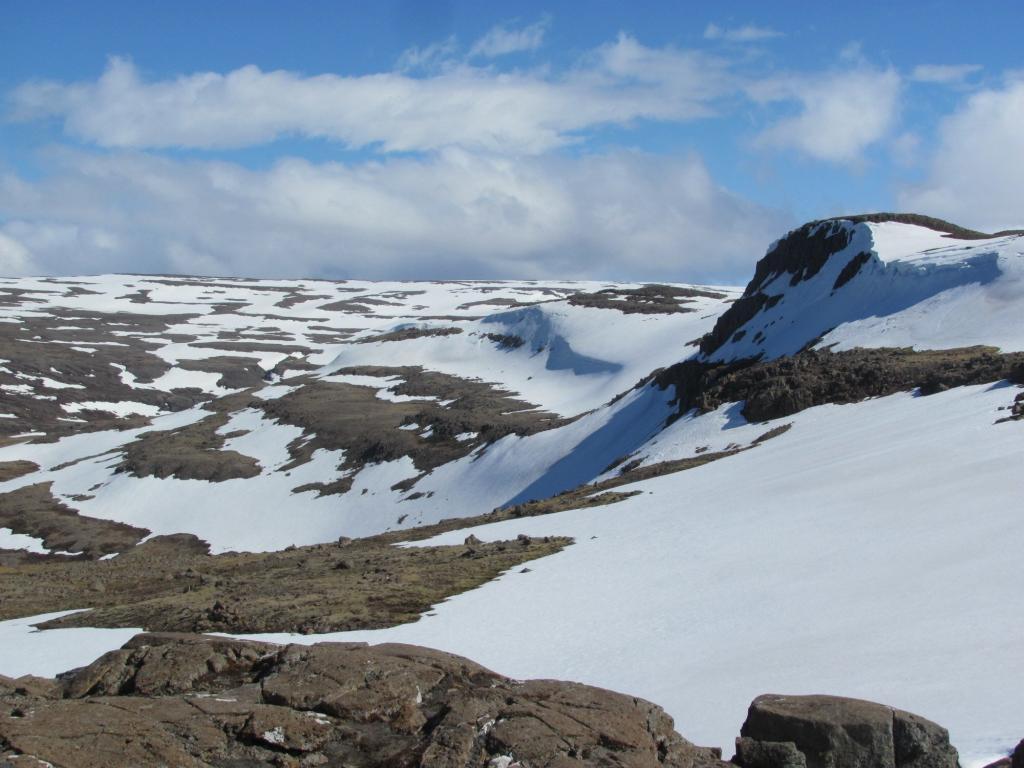 The tundra.
