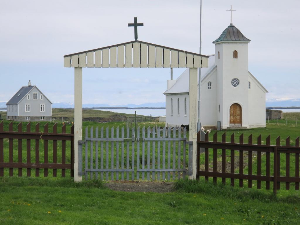 Church going sheep.