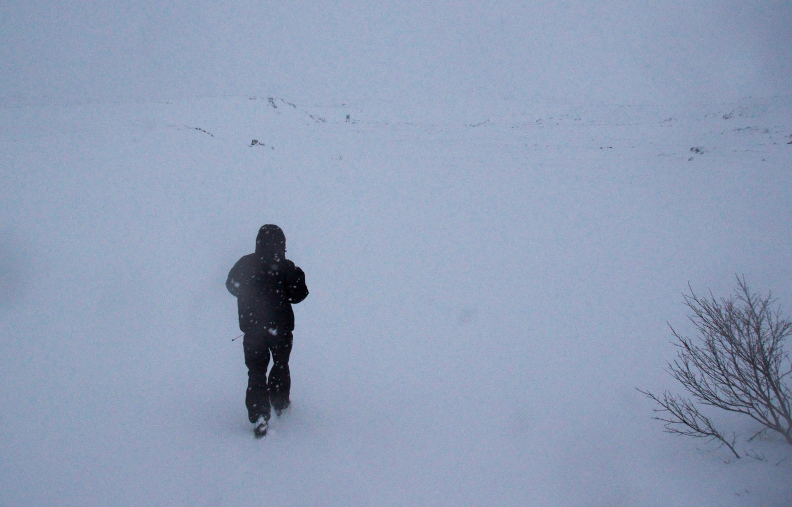 Magnus was walking fast in a place where the snow covered every inch of the land.